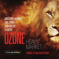 Heavy Market - Tribute to weather report