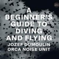 A beginner's guide to diving & flying